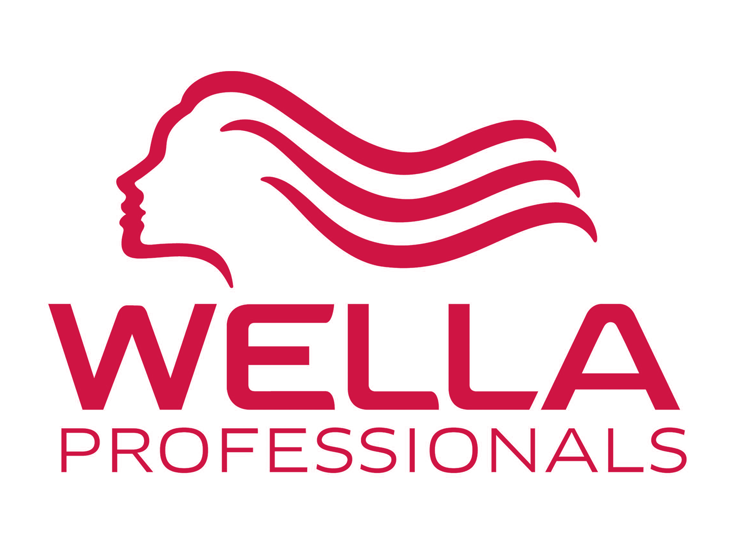 WELLA Passionistas First Edit